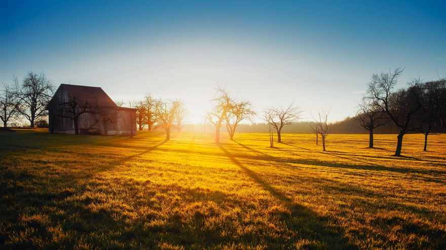 agriculture barn countryside dawn